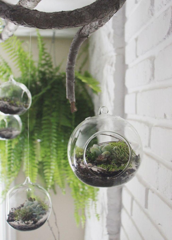 Idées de bricolage pour terrarium