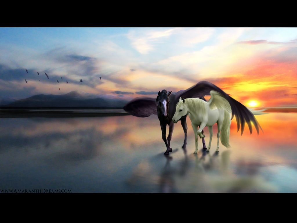 Cool Wallpaper Horse Couple - aa826e3a384b320d13841c051e9a0dda  Photograph_14367.jpg