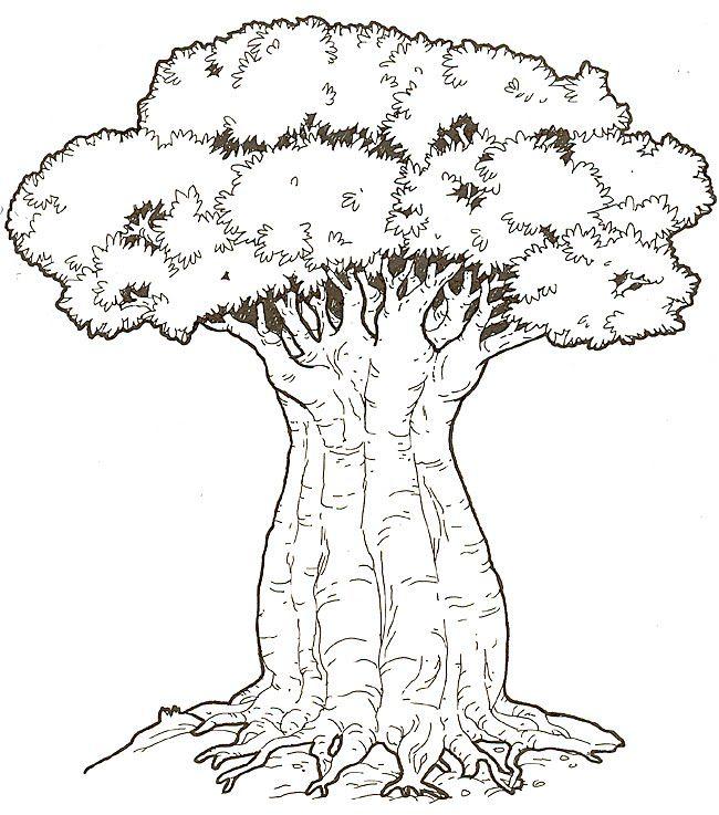 whirls and twirls around the world: Kenya crafts: Baobab Trees ...