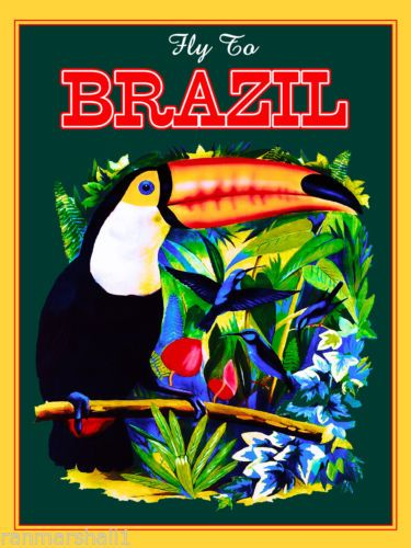 Fly to Brazil Toucan South America American Vintage Travel Advertisement Poster