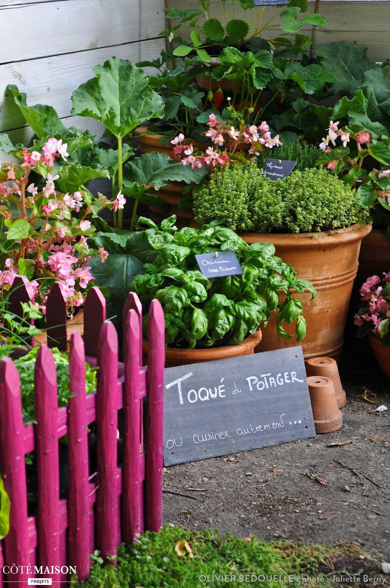 facile cr er et tr s esth tique le jardin potager ph m re a tout bon jardinage et. Black Bedroom Furniture Sets. Home Design Ideas