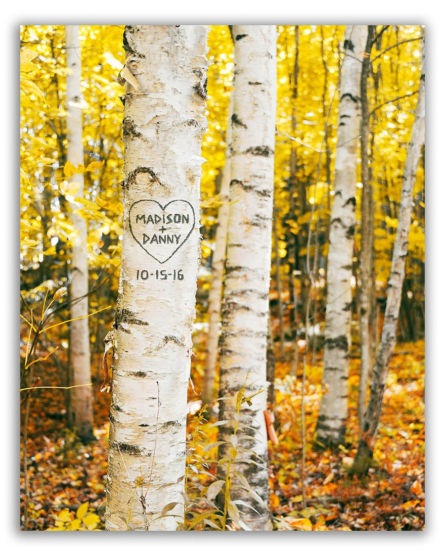 Birch Trees Personalized Wall Art | Birch, Tree art and Characters