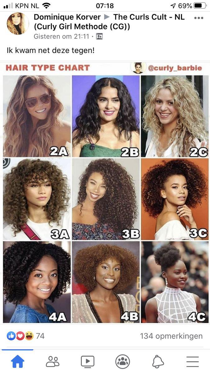 Pin By Anne Van Riet On Haarproducten Hair Type Chart Hair Type Curly Hair Styles