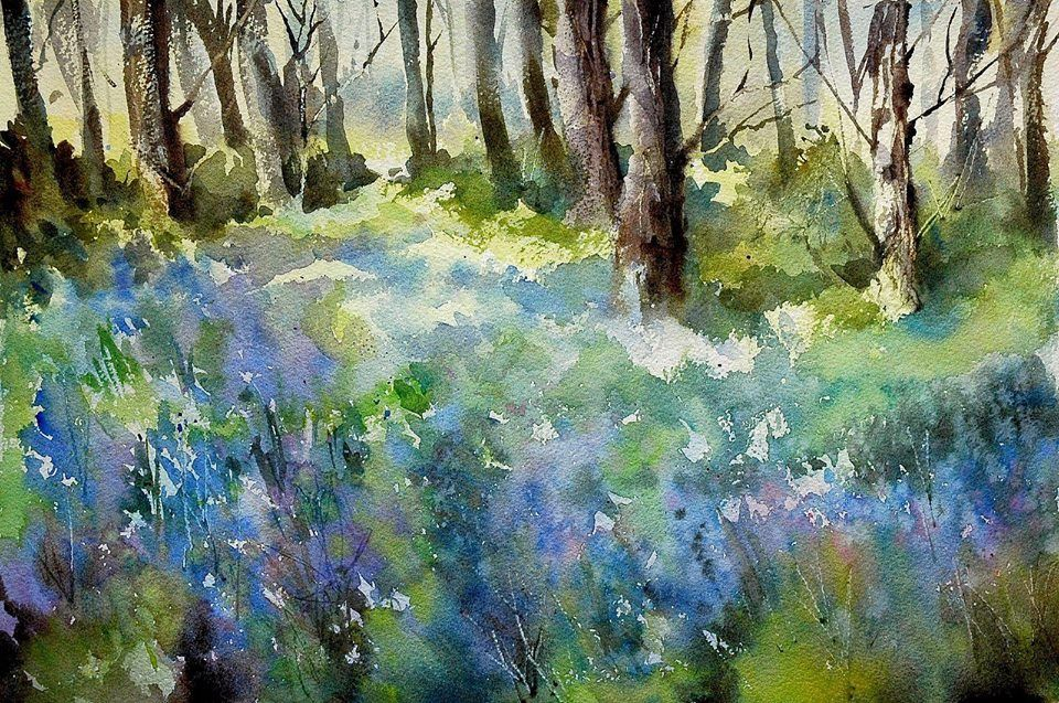 Trevor Waugh - bluebells