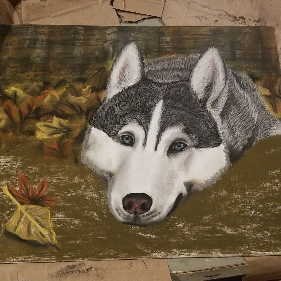 The Worst Dog Gifts Dogs Husky