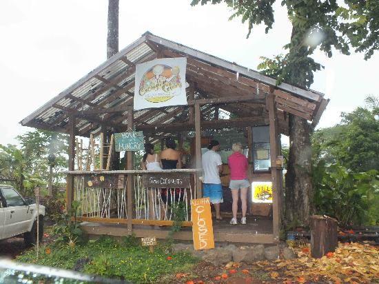 Coconut Glen S By The Hana Highway Trip To Maui Hawaii Honeymoon Maui Vacation