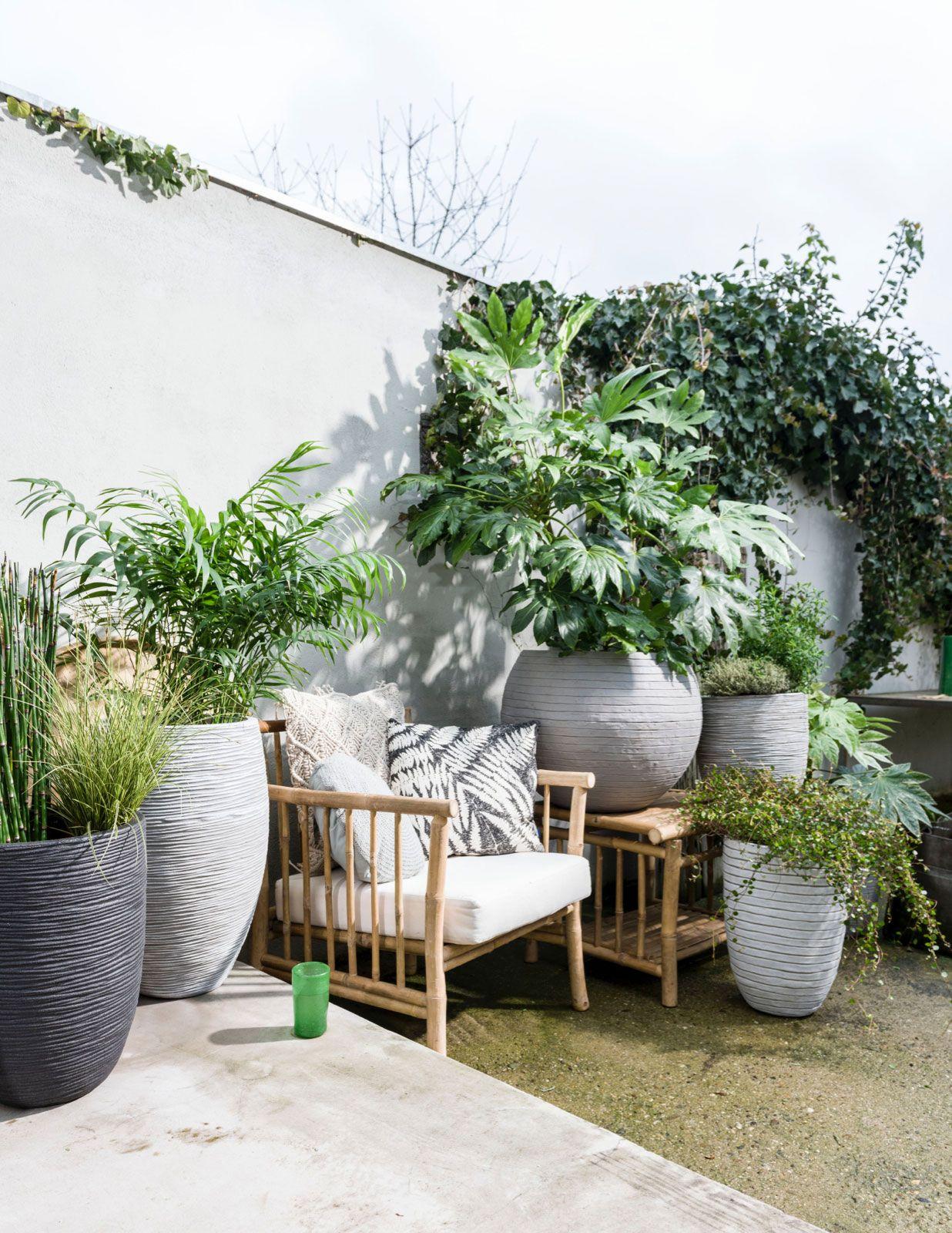 anaismoren terrasse pinterest terrasses ext rieur et jardins. Black Bedroom Furniture Sets. Home Design Ideas