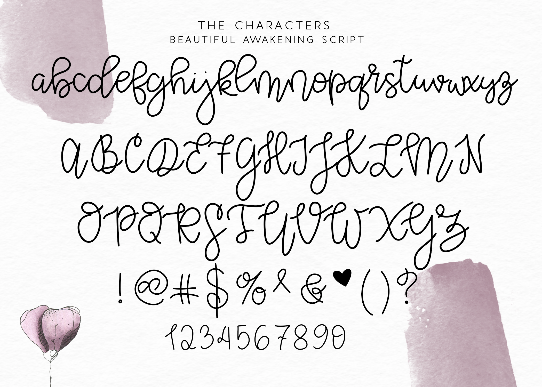 Beautiful Awakening A Serif Script Font Duo Estilos De