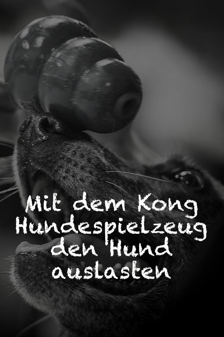 Mit dem Kong Hundespielzeug den Hund auslasten