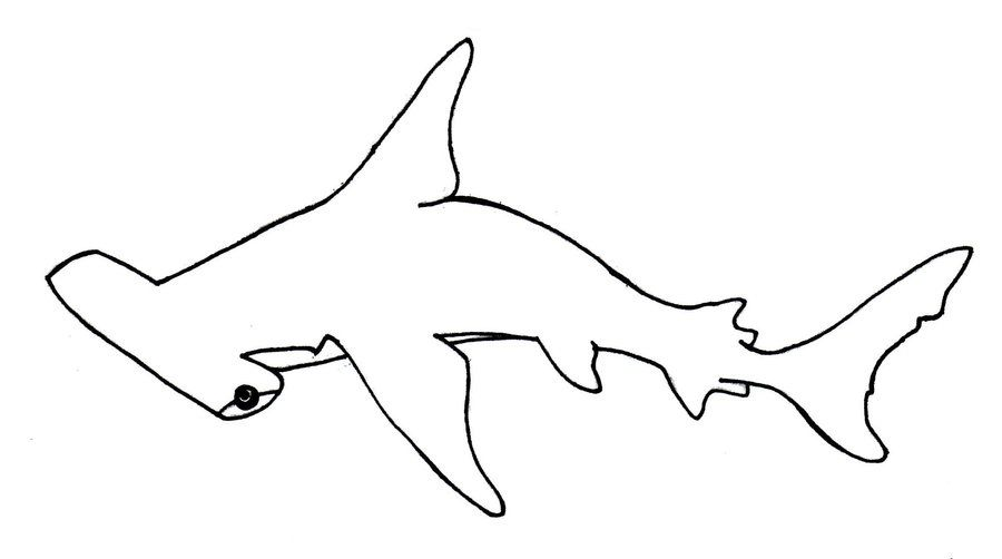 Hammerhead Shark Colouring Pages Hammerhai Hai Ausmalen