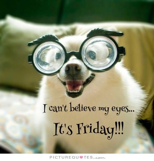 Its Friday Funny: I Can't Believe My Eyes. It's Friday. Friday Quotes On