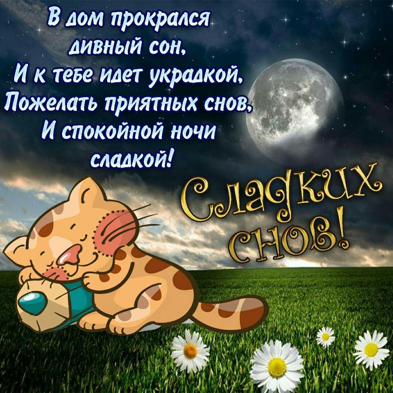 Открытка веселая спокойной ночи