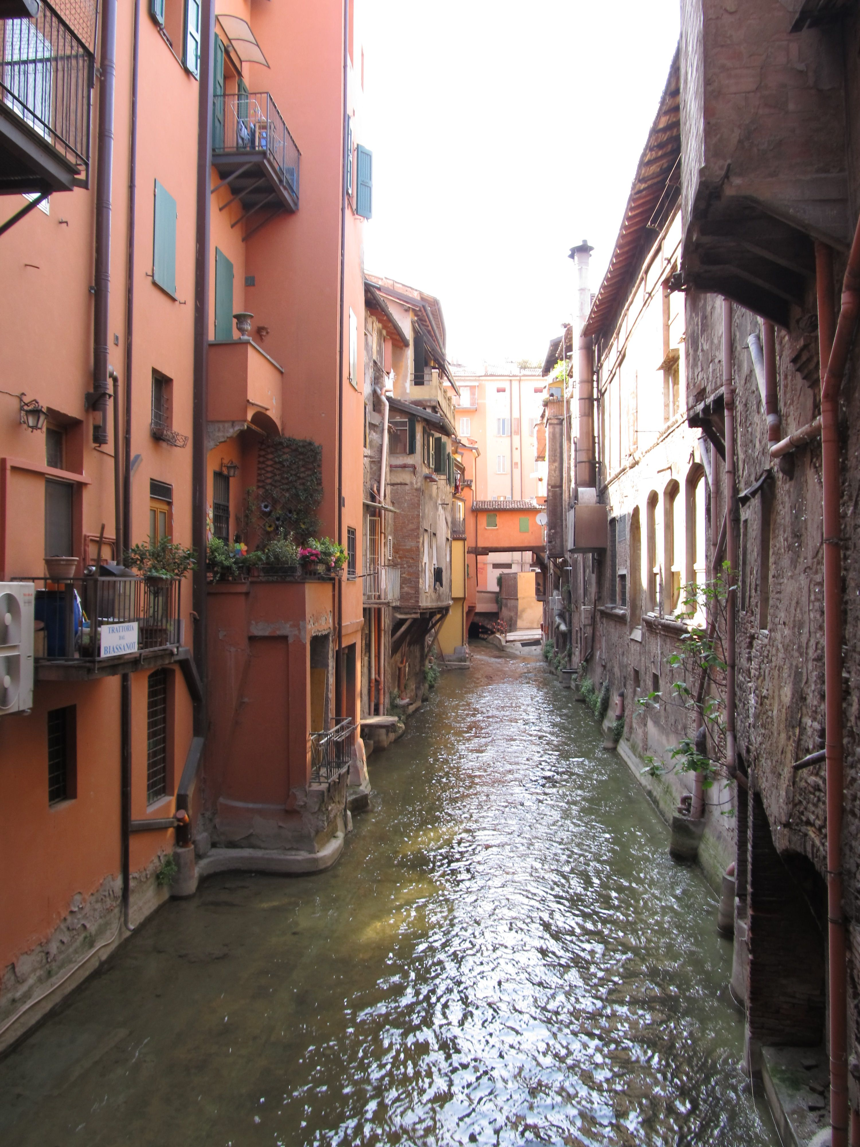 Picture I took looking through a window on the streets of Bologna, Italy. There are several canals that run under the city, and in places they are exposed.