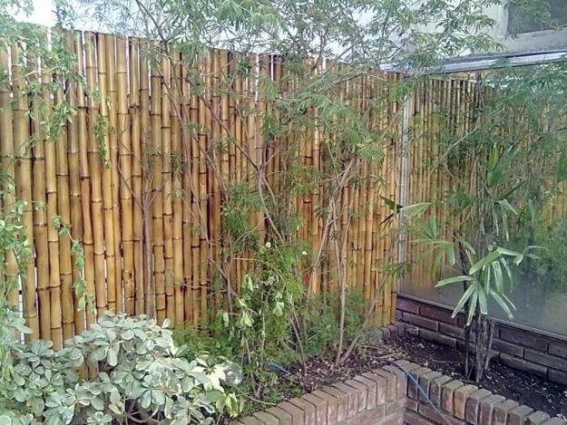 Valla con ca as jardines modernos pinterest search - Cercas para jardin ...