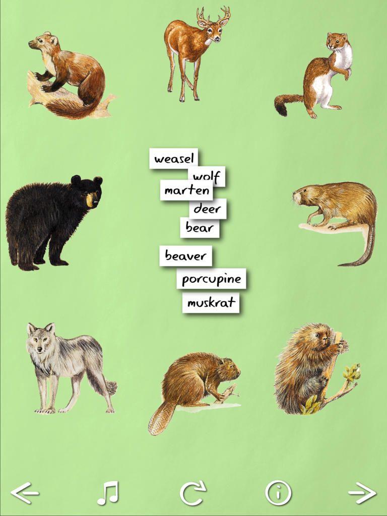 Animal Name Game Fun learning games, Name games