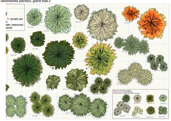 PLANTS Tekeningenpresentatie Pinterest Plants Landscaping