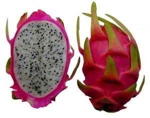 Pitaya Fruta Del Dragon De Fuego Frutas Pinterest China