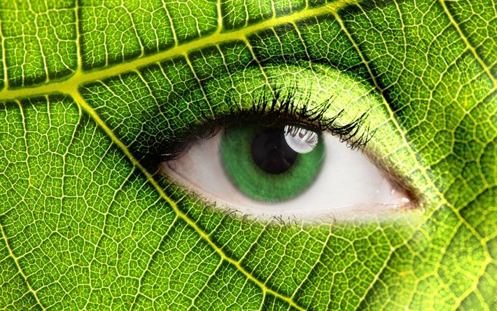 Lataa kuva Ekologia, vihreä lehti, silmä, Eco käsitteitä, pidä huolta luonnosta