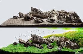 Resultado de imagem para iwagumi aquascape (com imagens ...