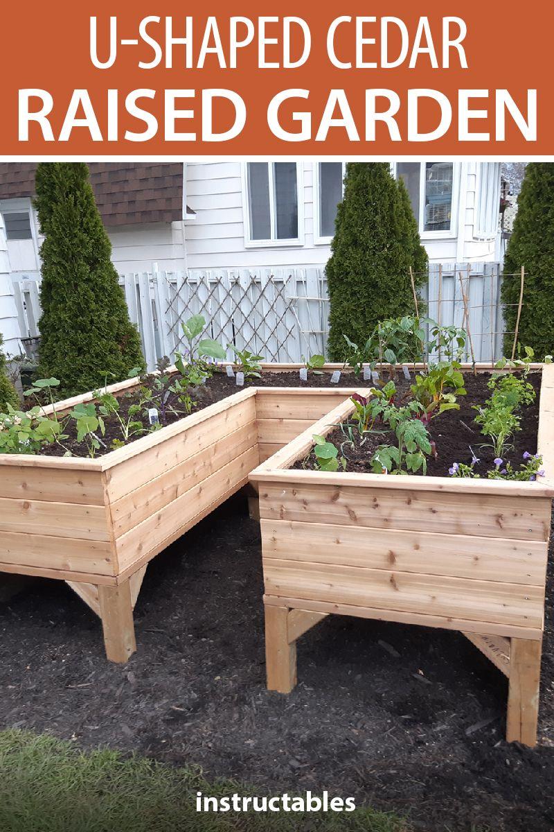 U Garden Plants