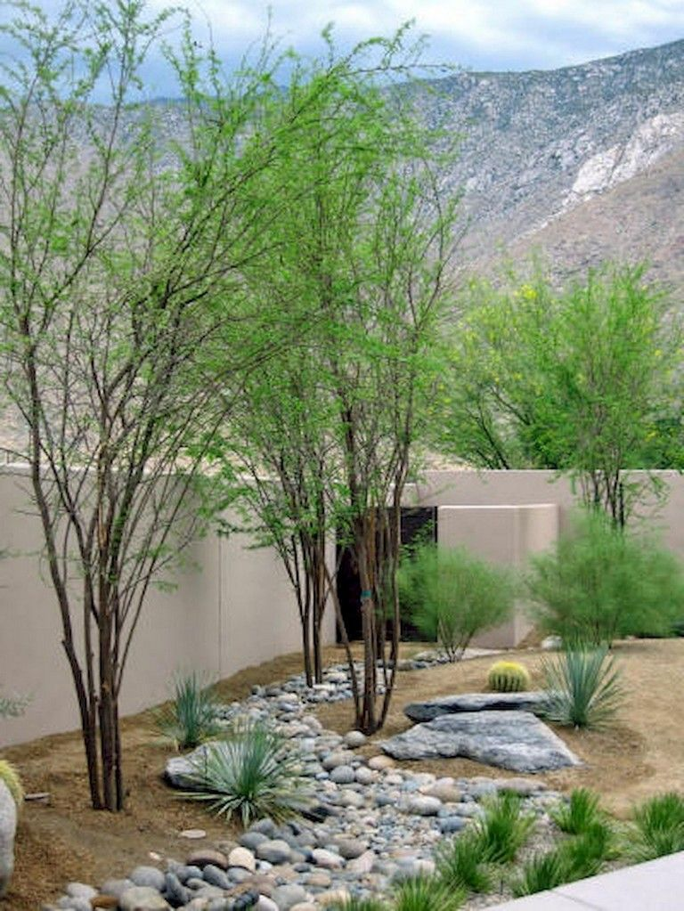 65 Homely Low Maintenance Front Yard Landscaping Ideas On A Budget Desert Backyard Desert Landscaping Backyard Backyard Landscaping Designs