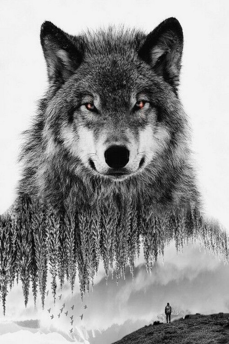 Timeless Wolf Of The Woods Tatouage Loup Tatouage Loup Hurlant Loup Solitaire
