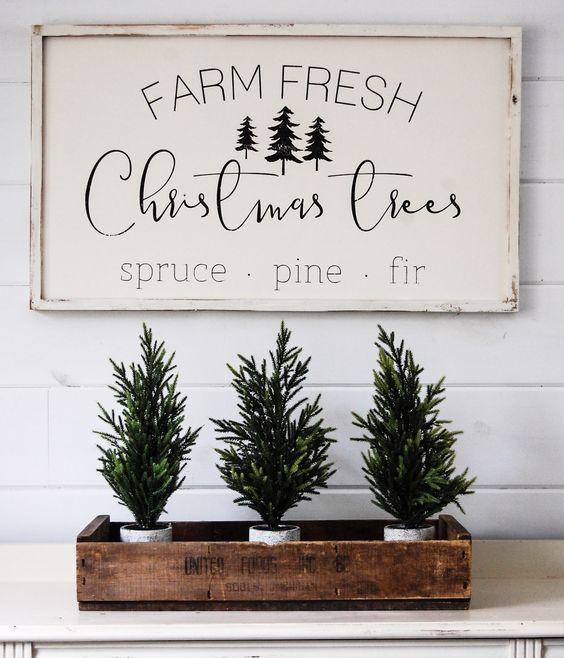 Farm fresh Christmas trees #christmasdecor