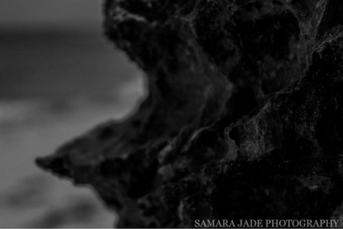 Untitled | Flickr - Photo Sharing! THE VERY NATURE OF BLACK