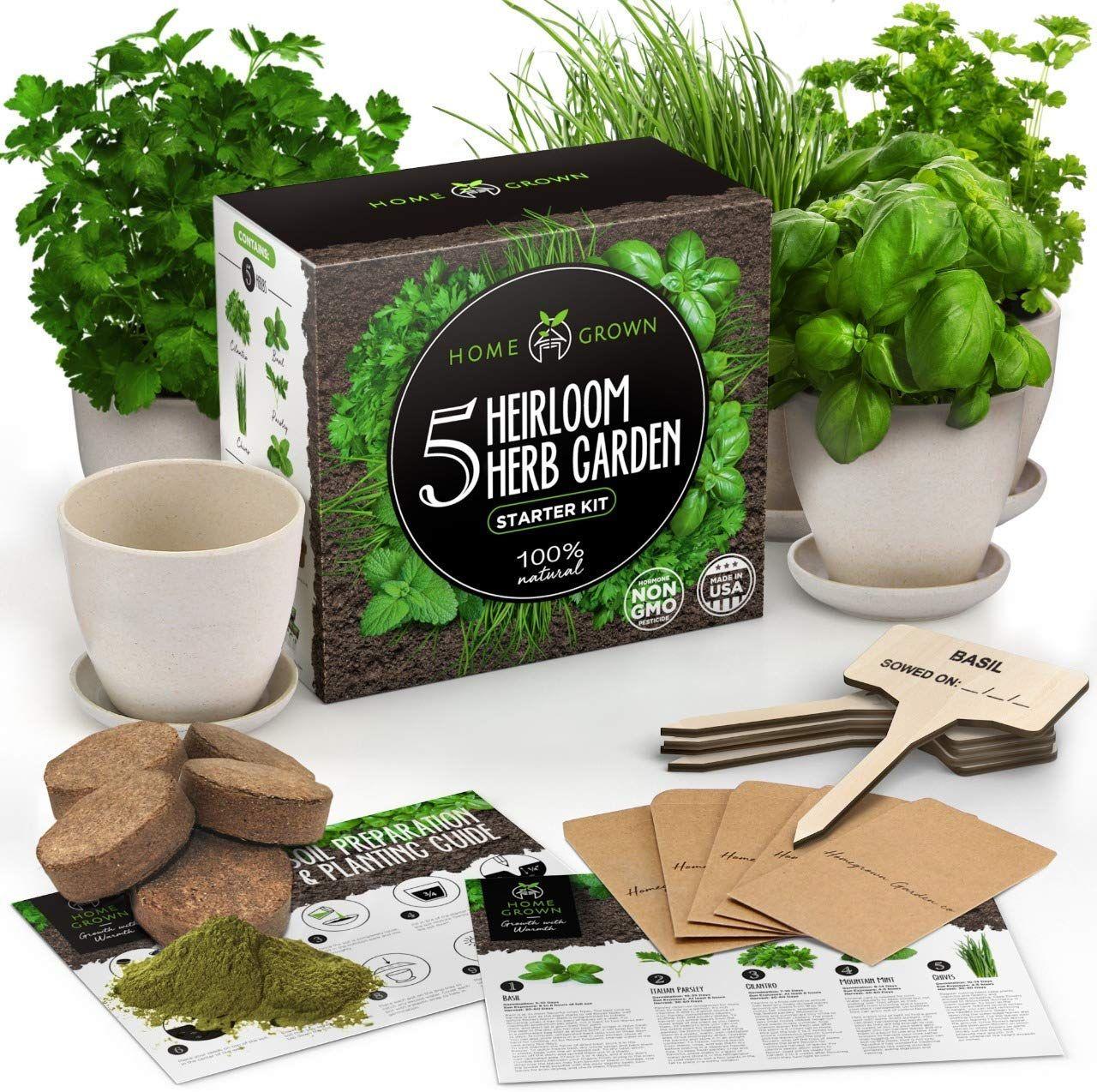 Indoor Herb Garden Starter Kit 5 Herb Seeds Gardening