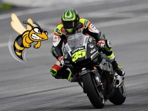That Moment When A Wasp Got Into Cal Crutchlow's Riding Leathers