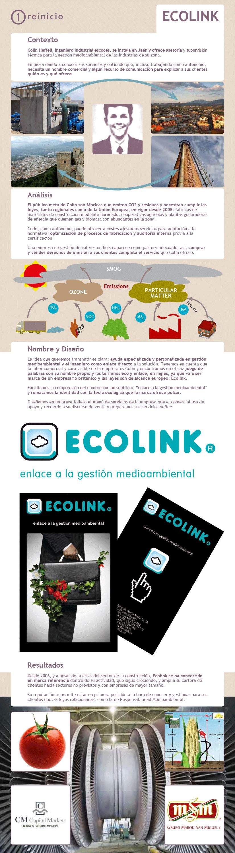 Infografía de proceso de trabajo de Reinicio.net para Ecolink