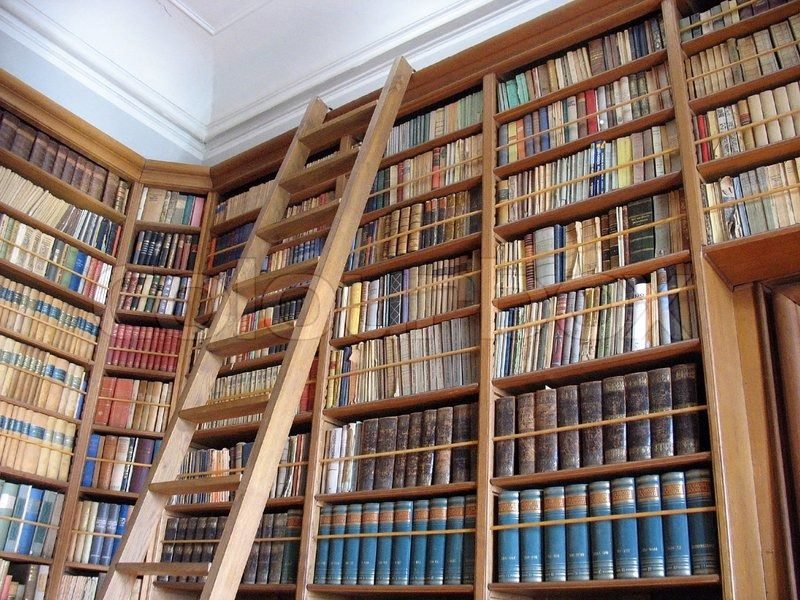 Genial bibliothek regal mit leiter Deutsche Deko Pinterest - deko wohnzimmer regal