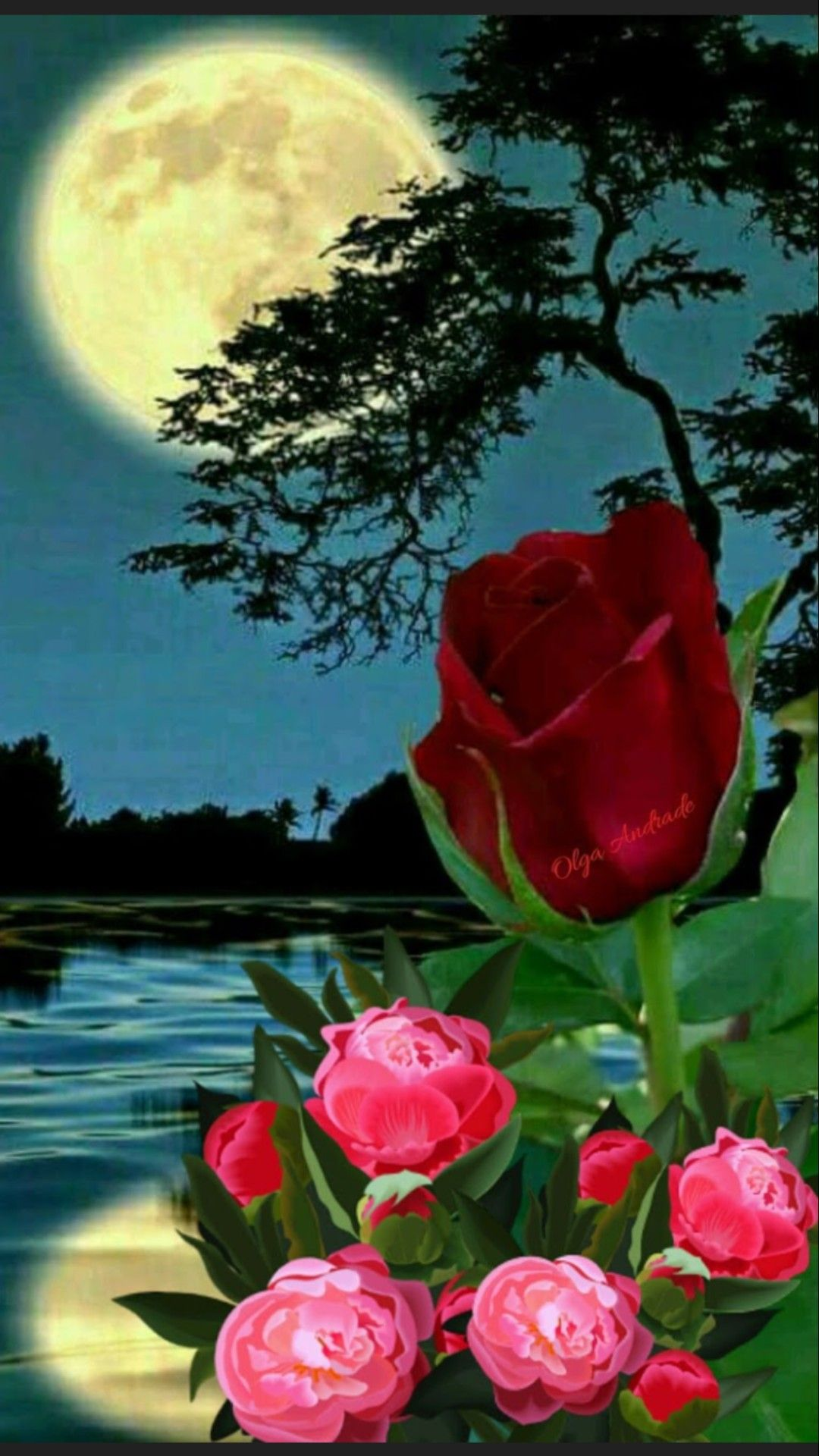 Pin By Elma Mendez On Beautiful Flowers And Roses Beautiful Nature Beautiful Rose Flowers Beautiful Flowers