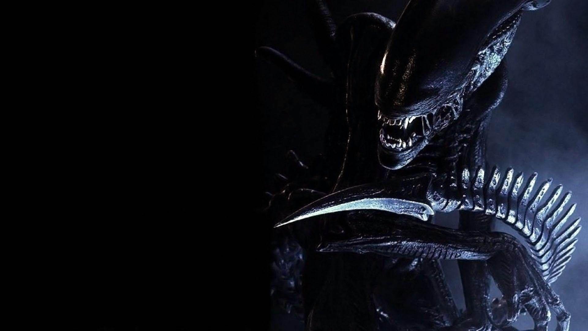 Alien Vs Predator Hd Wallpapers: Download Amazing Predator Alien Vs Theme Top Windows