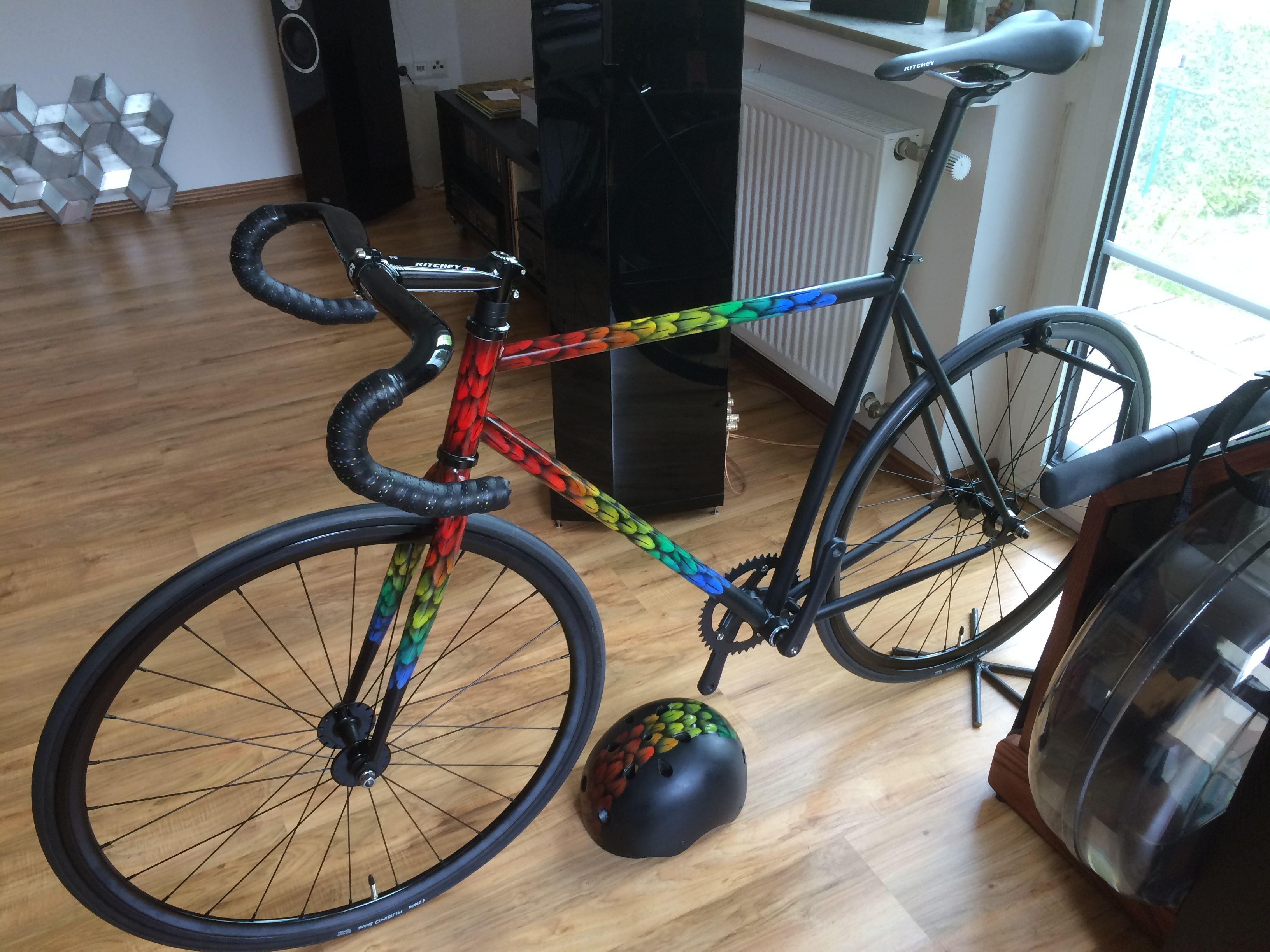 Custom Painted Bike Bicycle Trackbike Singlespeed Fixed Gear Fixie Airbrush