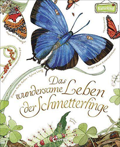 Schön Lebenszyklus Eines Schmetterlings Arbeitsblatt Für ...