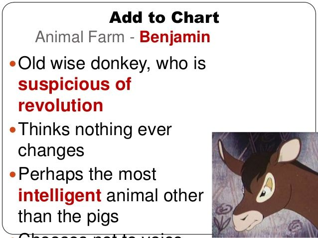 Image Result For Animal Farm Characters Farm Animals Farm Animals