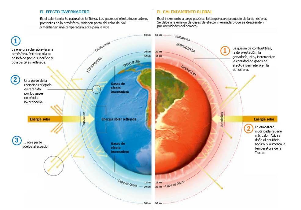 Cambio Climático Y Calentamiento Global Diferencias Infografía Efecto Invernadero Calentamiento Global Problemas Medioambientales