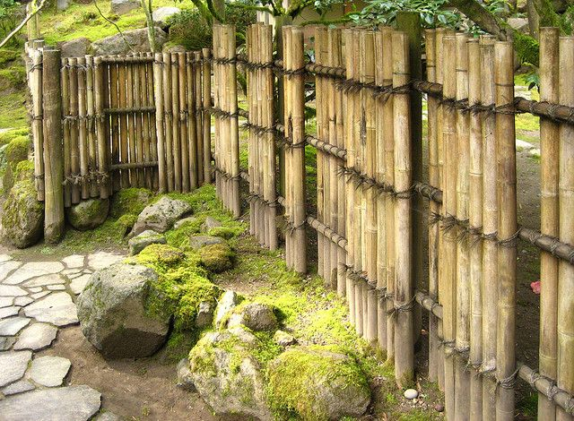 Bamboo Fencing Idea Bamboo Poles For The Home
