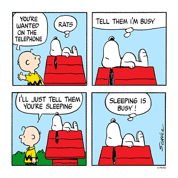 Wednesday with Snoopy and Charlie Brown. pic.twitter.com/7AyiQJq2Qz