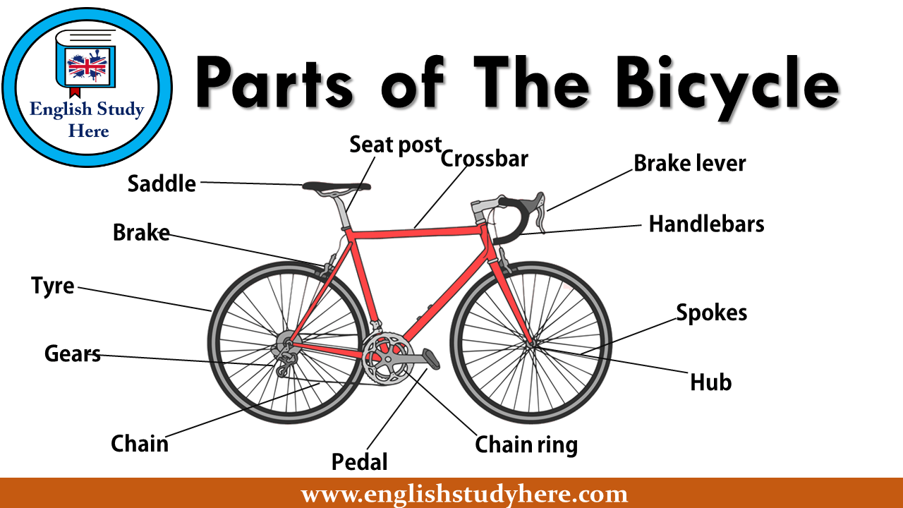 Parts Of The Bicycle Ingilizce