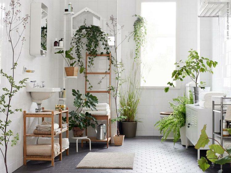 Mit Diesen Pflanzen Furs Bad Eine Tropische Wohlfuhloase Einrichten In 2020 Badezimmer Gestalten Badezimmerpflanzen Badezimmer Umgestalten