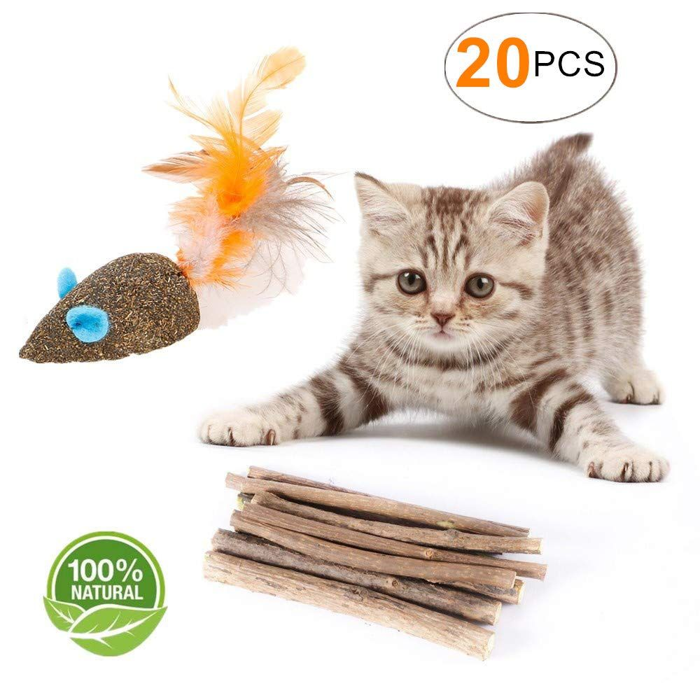 Yoopet Cat Catnip Sticks Natural Matatabi Silvervine Sticks Cleaning Teeth Molar Tools Kitten Cat Chew Toy With Free Cat Toys Catnip Mouse Cats And Kittens