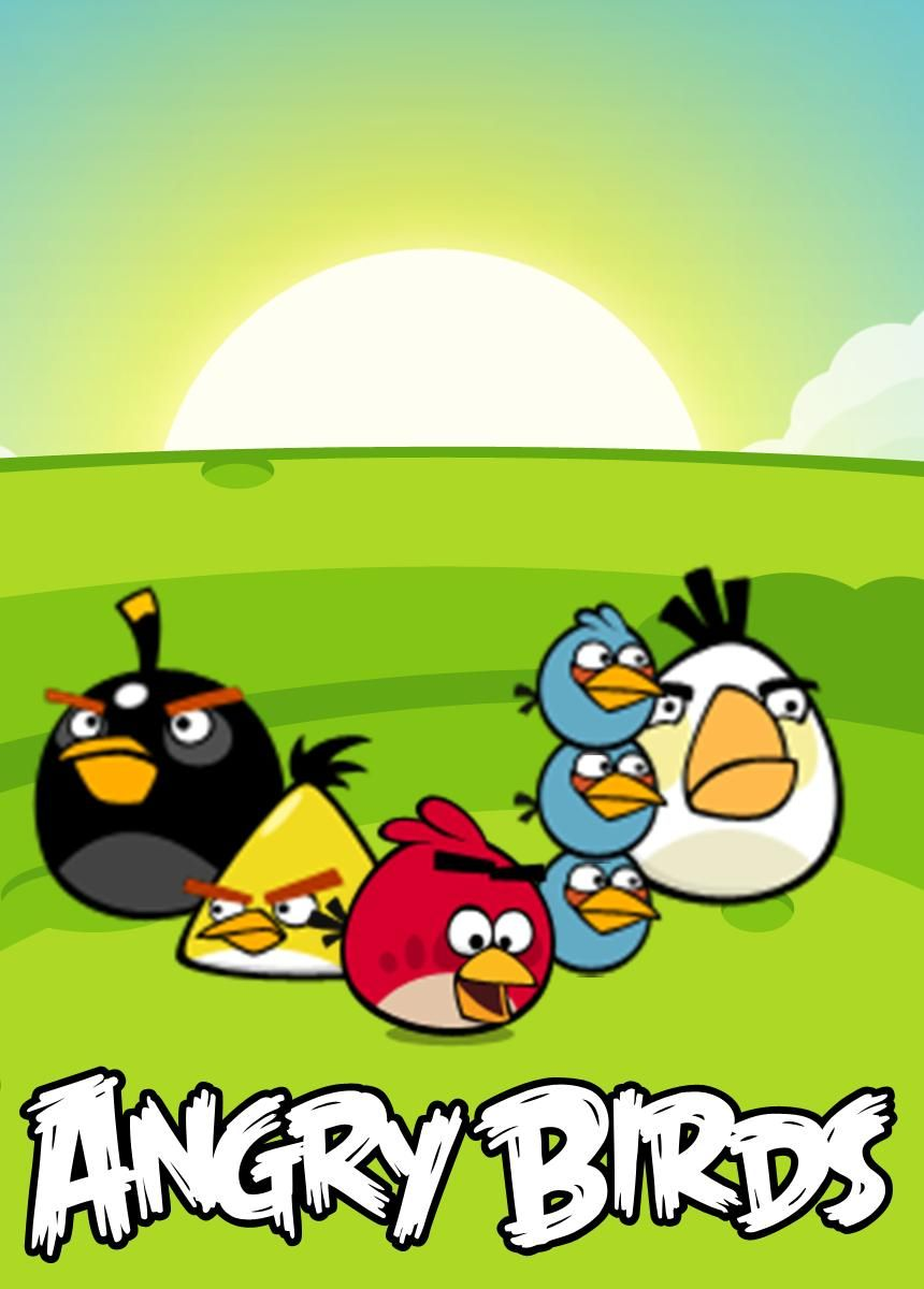The Angry Birds Movie HD Wallpapers and Backgrounds 640960 Angry