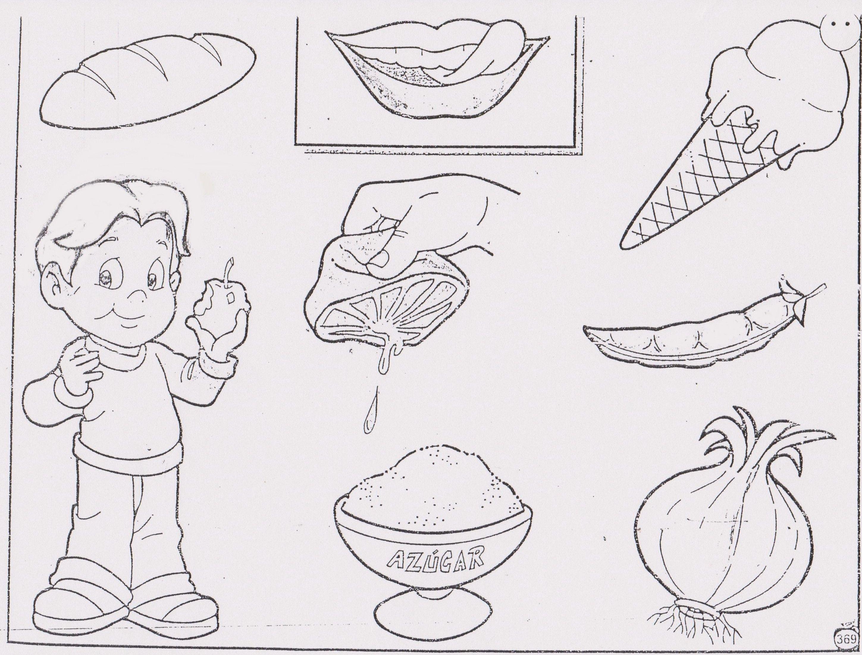 El Gusto Activities For Kids Female Sketch Male Sketch
