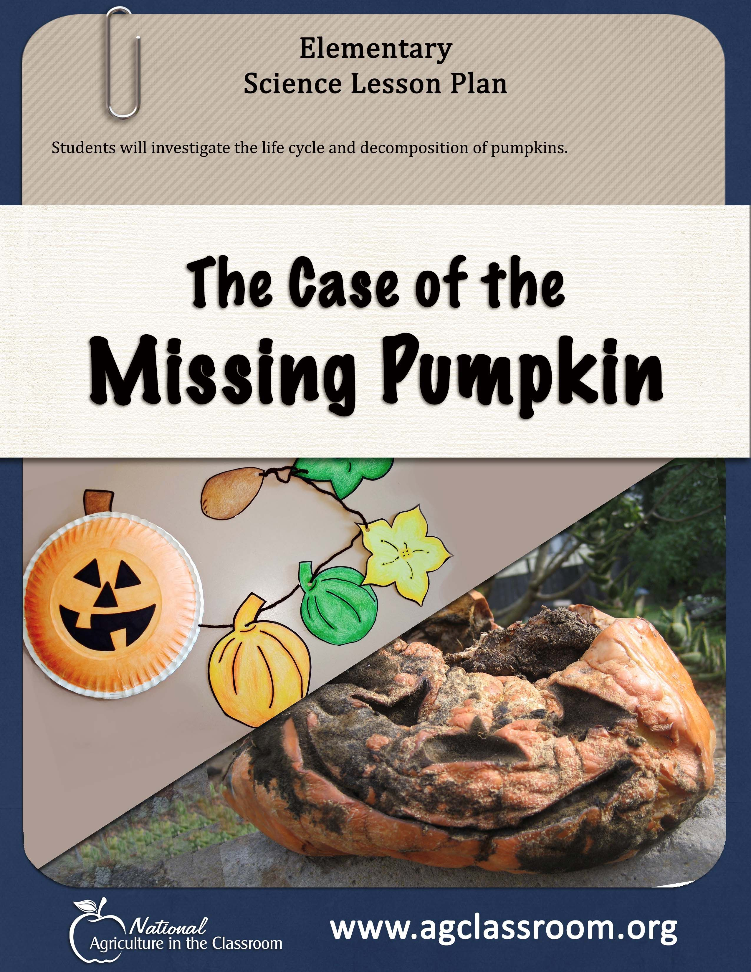 Science Lesson Plan Teaching Students About Decomposition