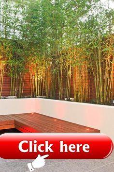 Bambus Sichtschutz; Tolle Idee für Pflanzgefäße. #bambussichtschutz Bambus Sichtschutz; Tolle Idee für Pflanzgefäße.  Bambus Sichtschutz; Tolle Idee für Pflanzgefäße.  The post Bambus Sichtschutz; Tolle Idee für Pflanzgefäße. appeared first on Sichtschutz. #bambussichtschutz