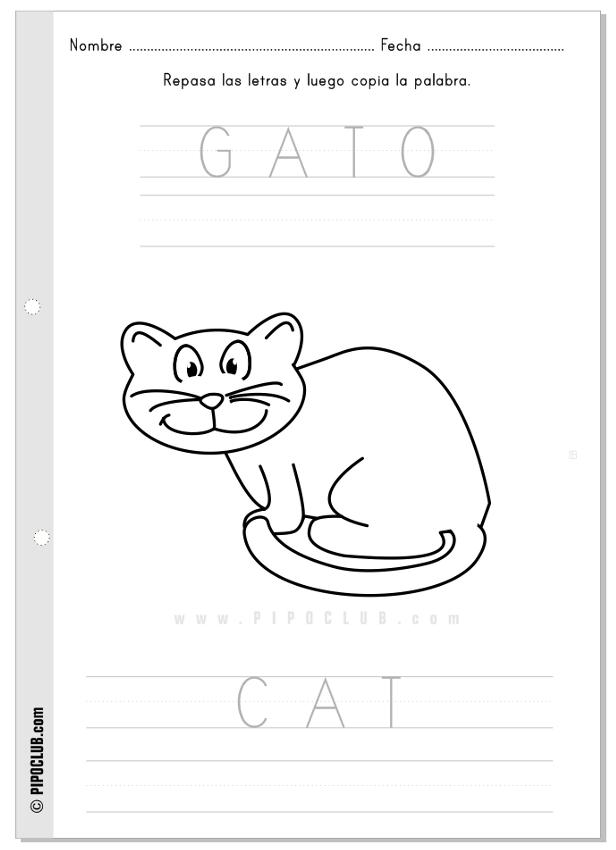 Actividad Gato Cat | proyecto animales granja | Pinterest ...