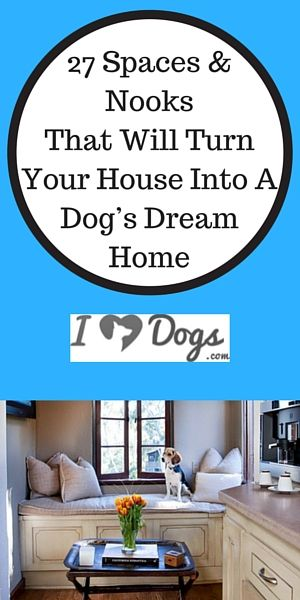 27 Spaces & Nooks That Will Turn Your House Into A Dog's Dream Home