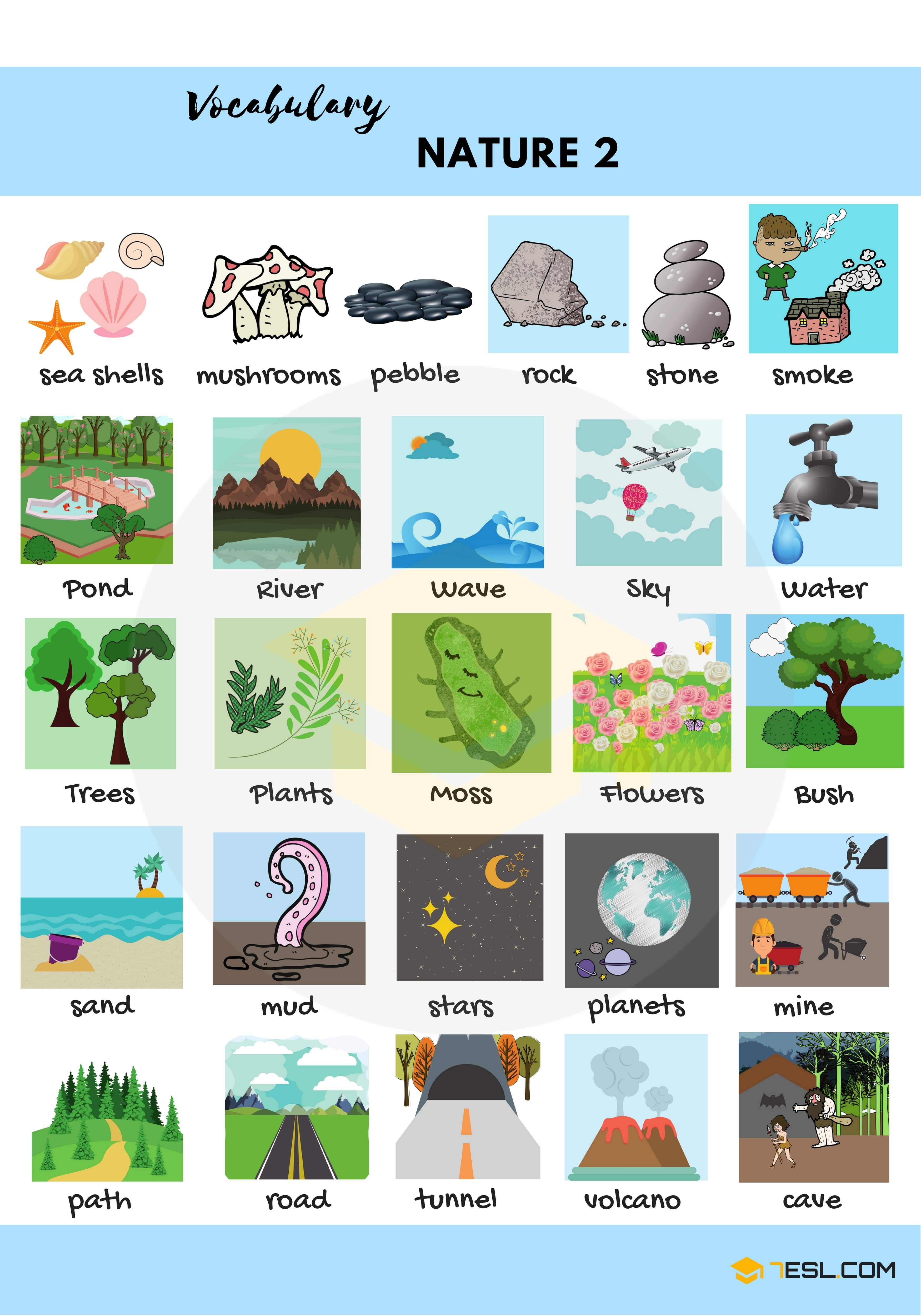 Nature Vocabulary In English